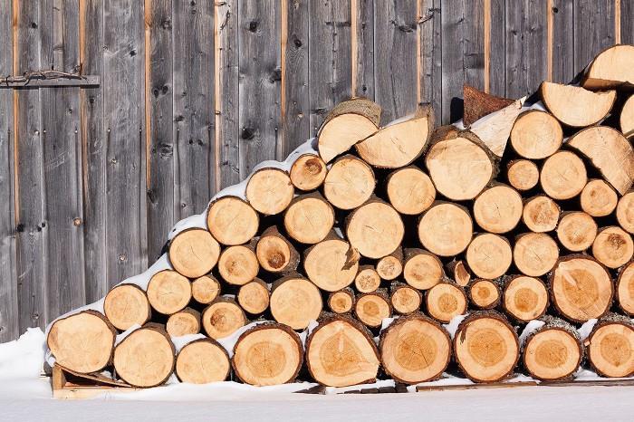 200 000 zł i renta dla przygniecionego przez ścięte drzewo