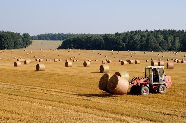 wypadek w rolnictwie