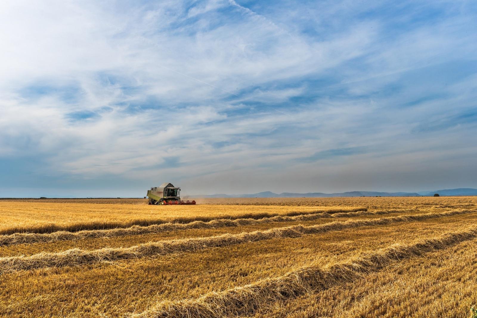 Miałeś wypadek przy pracy w gospodarstwie rolnym? Sprawdź, jak odzyskać odszkodowanie!